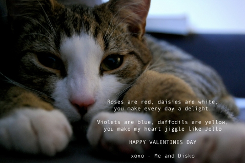 Me and Disko // Valentines Day Card